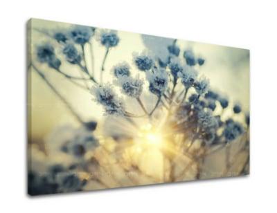 Obraz květiny ve skandinávském stylu